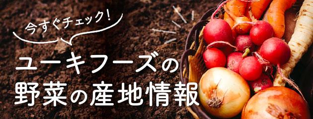 野菜の産地情報